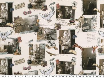 BW Digital Harry Potter/Bilder 150cm