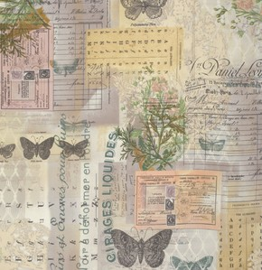 Coats-Tim Holtz Wallflower-Botanical