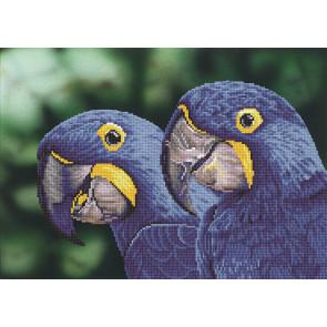 DIAMOND DOTZ Blue Hyacinth Macaws 52x37 cm