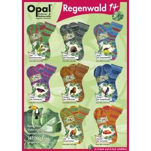 OPAL Regenwald 14 4-fach Sortiment
