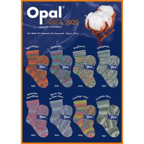 Opal Cotton Premium 2020 4-fach Sortiment