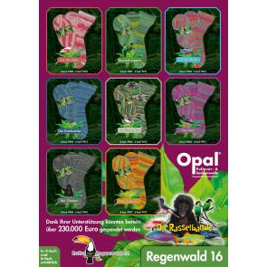 Opal Regenwald 16 4-fach Sortiment
