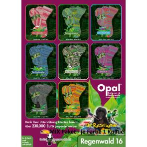 Opal Regenwald 16 6-fach Mix (8x1Knäuel)