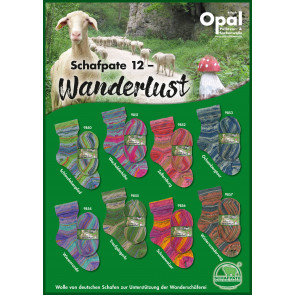 Opal Schafpate 12 Wanderlust 4-fach Sortiment
