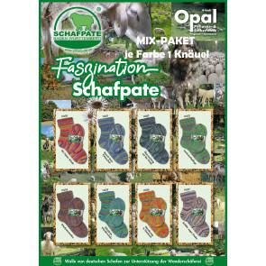 Opal Schafpate 13 Faszination (8x1Knäuel)