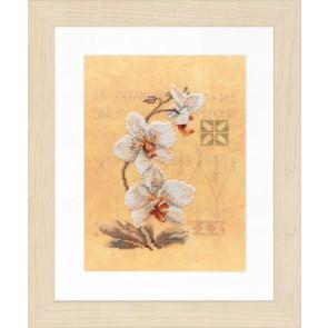 LAN. Zählmusterpackung 3 Orchideen 17x23cm